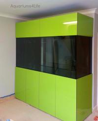 Green contemporary very large aquarium pool room and man cave addition maintained installed 900mm high aquarim 19mm thick glass front openinf steel framed pelmet