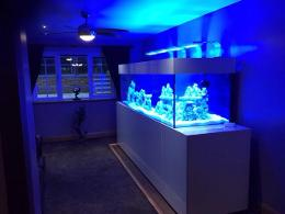 Custom Designed AQuairum cabinet. In situ build by Aquariums4Life
