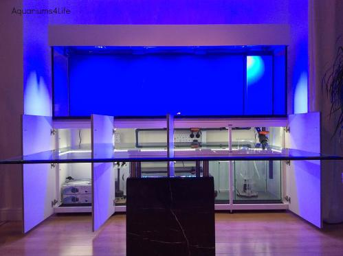 Aquarium4Life bespoke aqarium design back lit aquarium and steel framed cabinet with white powder coated