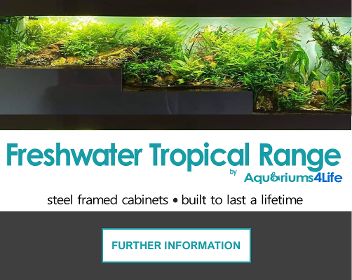 Tropical Freshwater aquariums and steel framed cabinets best in the uk