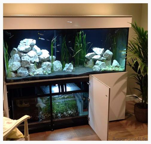 Aquariums4Life Tropical with Sump Closed top Pelmet