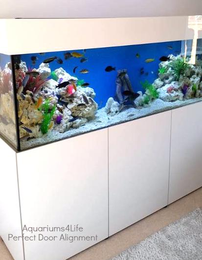 Tropical Aquarium with Ocean Rock and coral sand Steel Framed aquarium cabinet custom built perfect doors white gloss shiney and perfect by Aquariums4Life