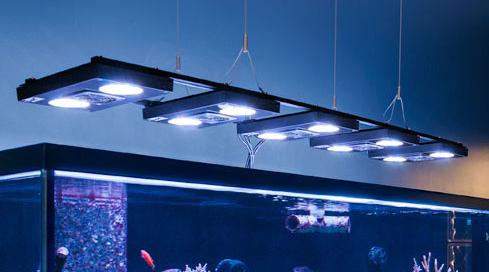 hanging aquarium light from ceiling