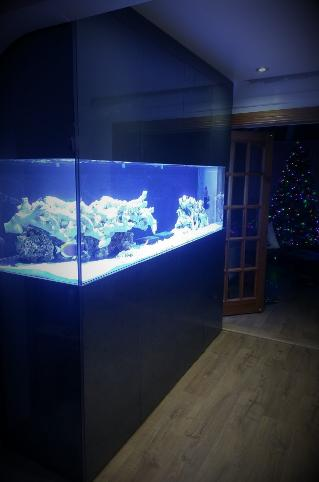 Full Floor to ceiling aquarium design bespoke tank for marine by Aquariums4Life